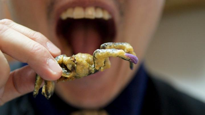 Brooklyn Bugs: Evolving Our Taste for Edible Insects