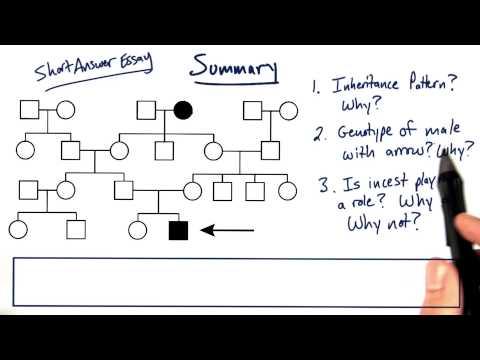 Summary thumbnail