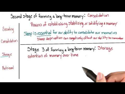 Storage - Intro to Psychology thumbnail