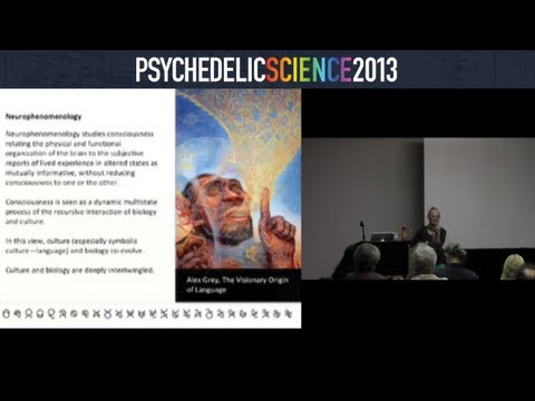 Communicating the Unspeakable: Linguistic Phenomena in the Psychedelic Sphere - Diana Reed Slattery thumbnail