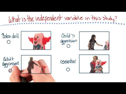Independent variable of this study - Intro to Psychology thumbnail