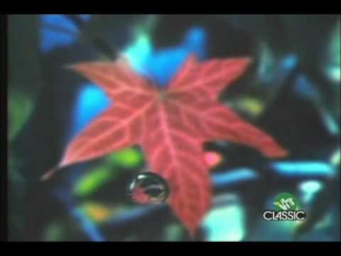Lightning Seeds - Pure thumbnail