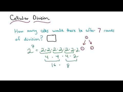 Cellular Division Solved - Visualizing Algebra thumbnail