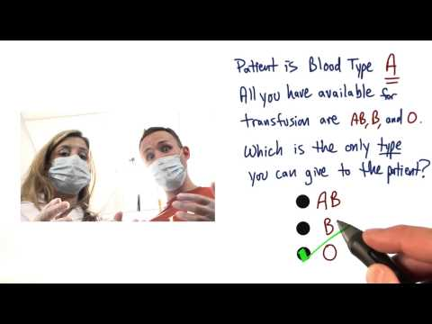 Blood Type Match thumbnail