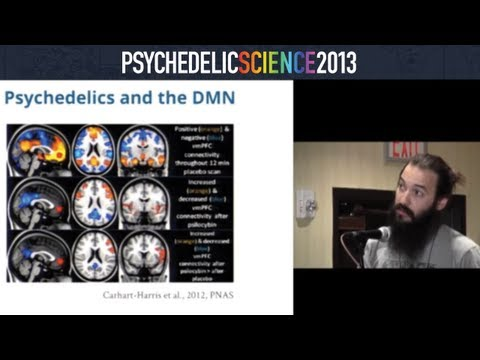 The Effects of Psilocybin and MDMA on Resting State Hippocampal Functional Connectivity thumbnail