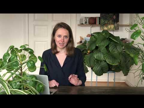 Harmful Advice for the New Work | Elena Yarmanova | TEDxKanzlerPark thumbnail