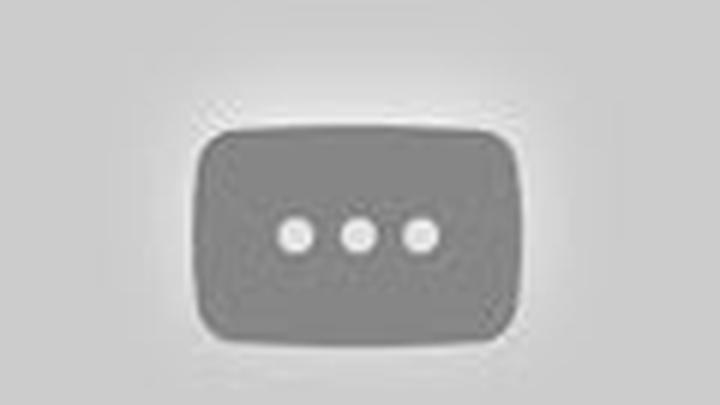 Bushell Lab video