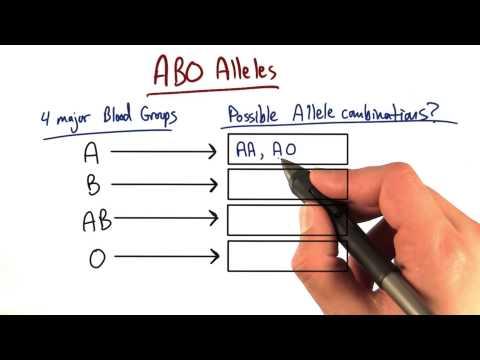 Two Alleles thumbnail