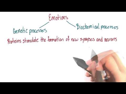 Memory processes and emotions - Intro to Psychology thumbnail