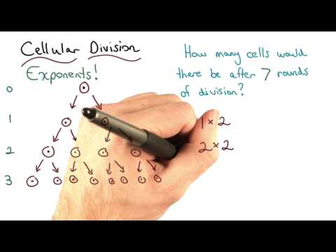 Cellular Division - Visualizing Algebra thumbnail