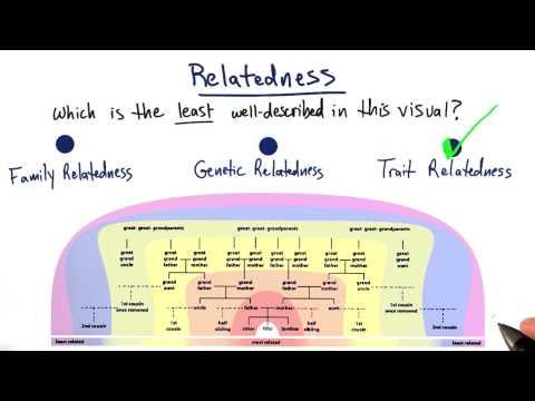 Relatedness thumbnail
