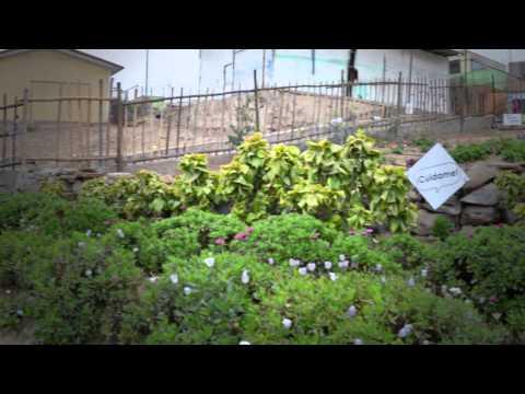 SEEDocs Escuela Ecologica thumbnail