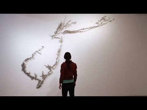 "Maya Lin: New York | ""Exclusive"" 