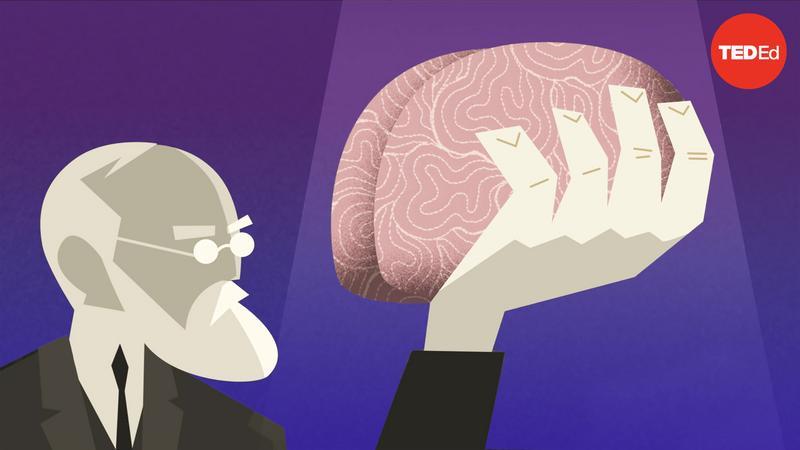 History vs. Sigmund Freud thumbnail