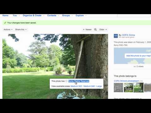 Getting started in Flickr - Technical glossary thumbnail