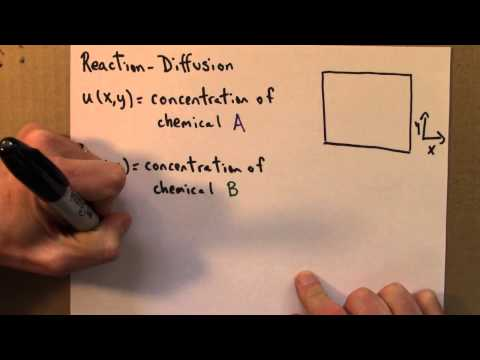 Chaos 9.2 Reaction-Diffusion Equations (1) thumbnail