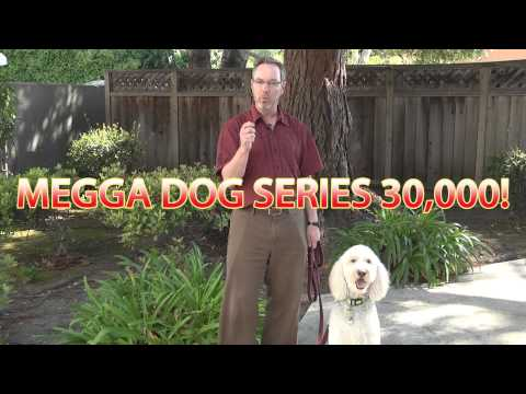 Megga dog series 30000 thumbnail