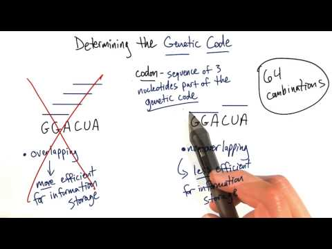 Genetic Code thumbnail