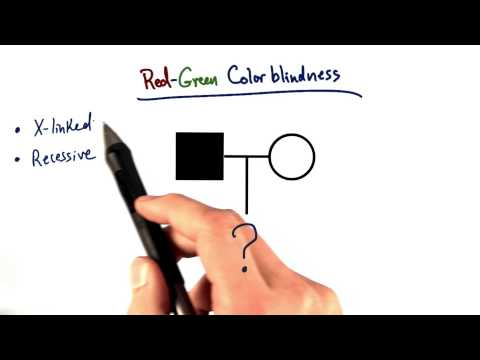 Color Blindness thumbnail