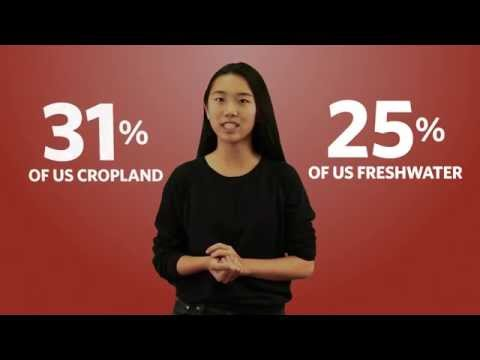 What is the Environmental Impact of Feeding the World? | California Academy of Sciences thumbnail
