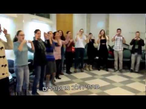 לפעמים חלומות מתגשמים בביצוע הקבוצה של מוריה פלס thumbnail