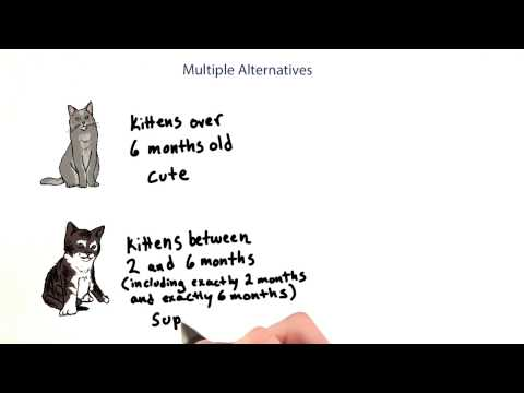 Cutest Kitten - Intro to Java Programming thumbnail