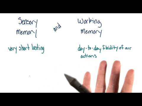 Introduction to long-term memory - Intro to Psychology thumbnail