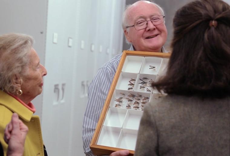 Science Today: An Entomologist's Entomologist | California Academy of Sciences thumbnail