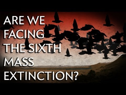 Are We Facing the Sixth Mass Extinction? - Instant Egghead #24 thumbnail